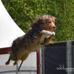 2016 Animal Event - DSC_1702 bewerkt